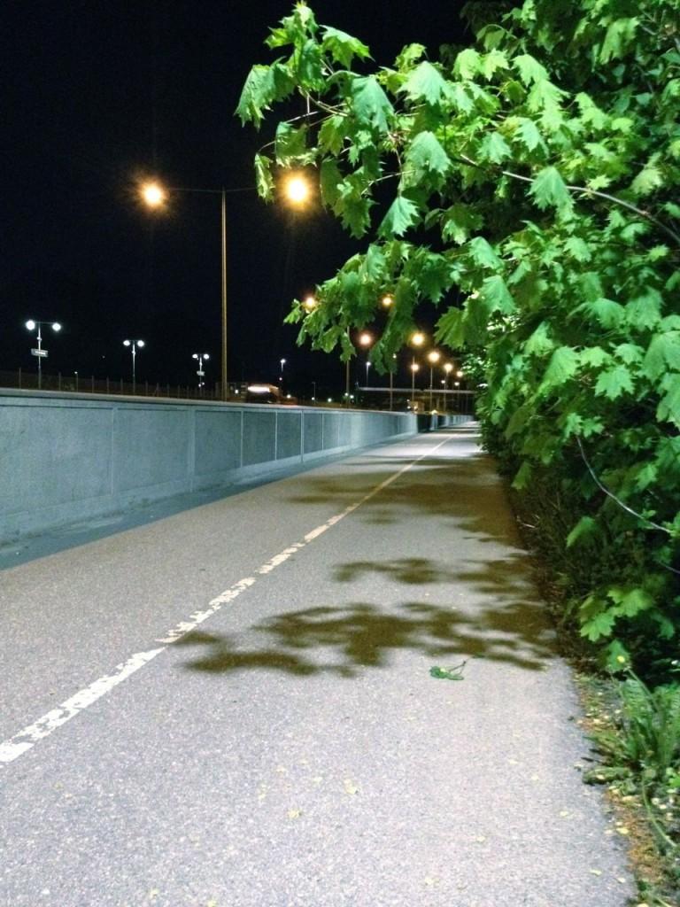tranebergsbron buskar