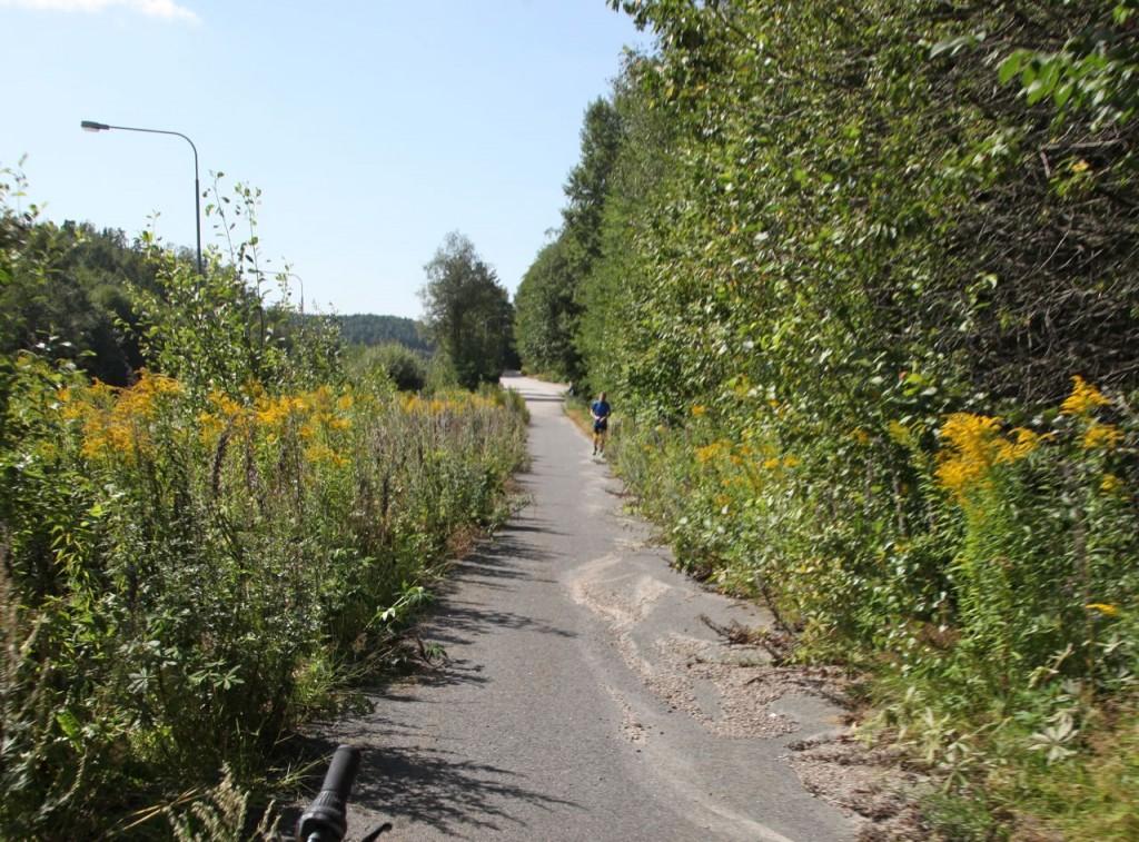 Borås Gånghester  buskage