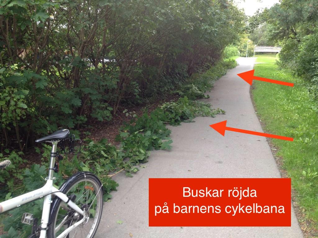 Klipper buskar Hässelby lokalt text